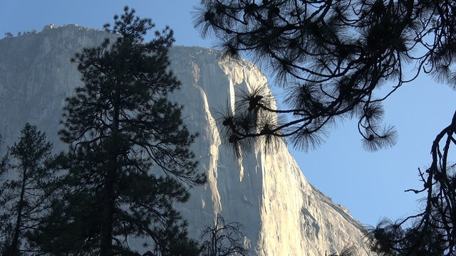 Yosemite National Park & The Colorado Rockies