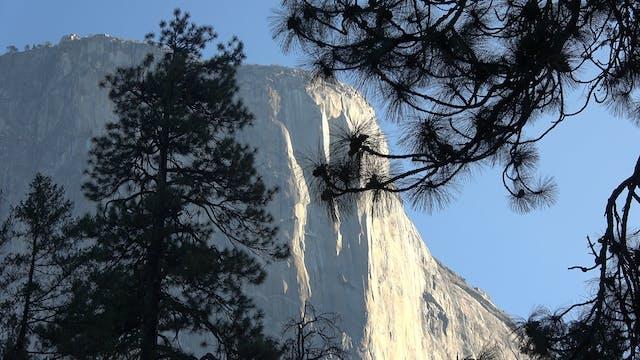 Yosemite National Park & The Colorado...