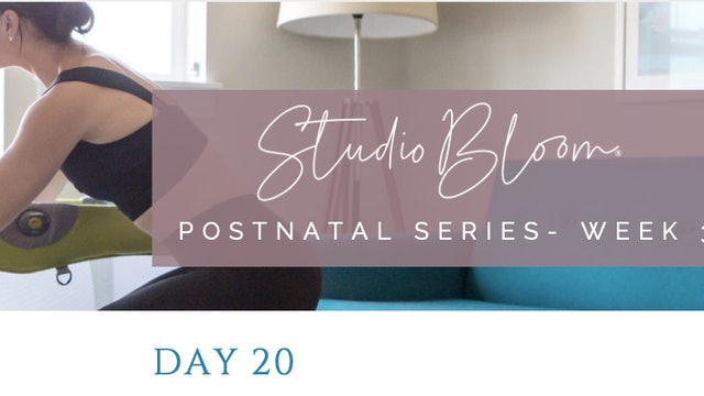 Postnatal Series Day 20