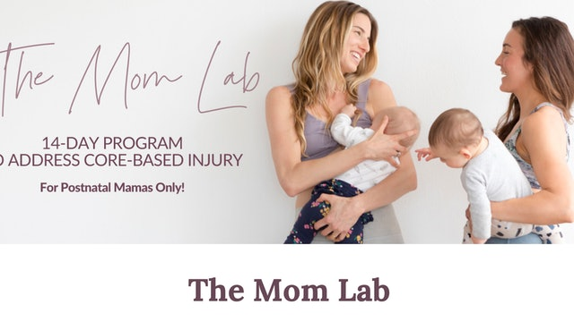 The Mom Lab Overview