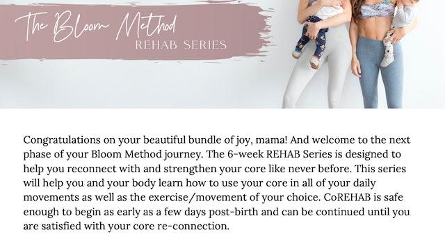 REHAB Series Summary