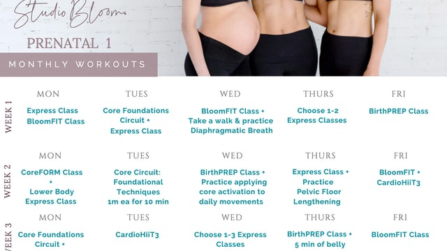 Prenatal Workout Calendar 1