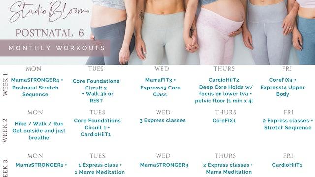 Postnatal Workout Calendar 6