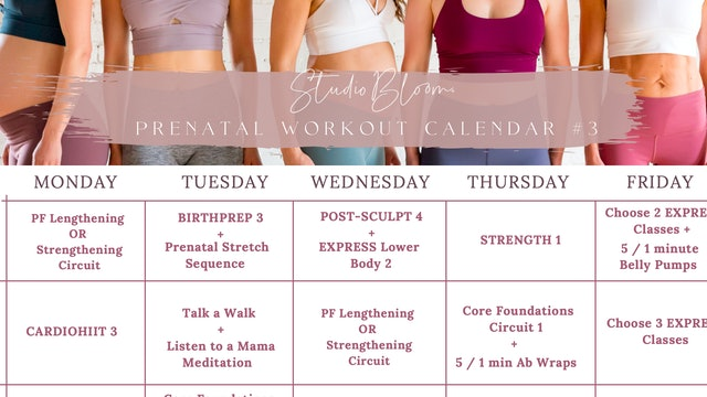 Prenatal Workout Calendar 3