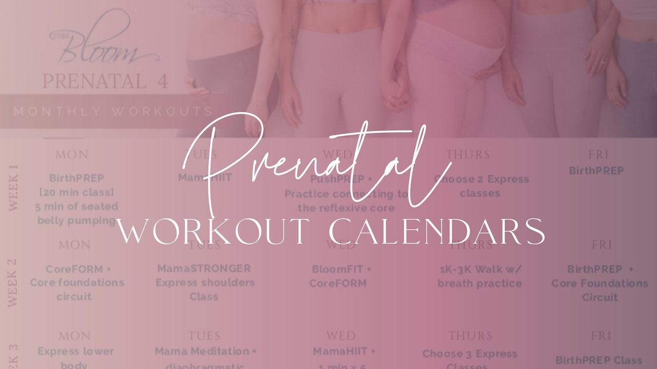 Prenatal Workout Calendars