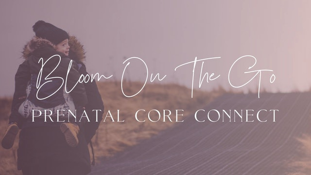 Prenatal Core Connect (On-The-Go)