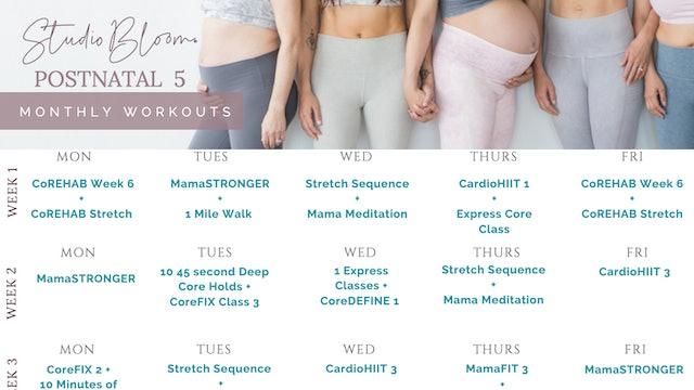 Postnatal Workout Calendar 5