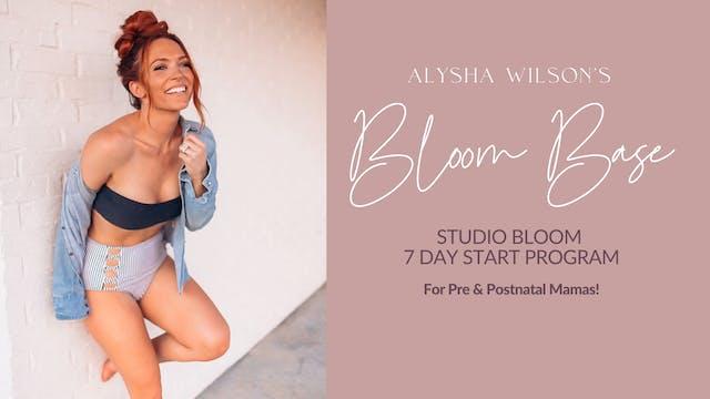 Alysha Wilson's Bloom Base