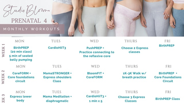 Prenatal Workout Calendar 4