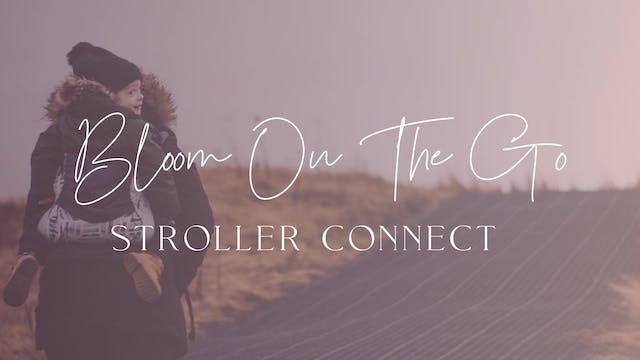 Stroller Connect (On-The-Go)