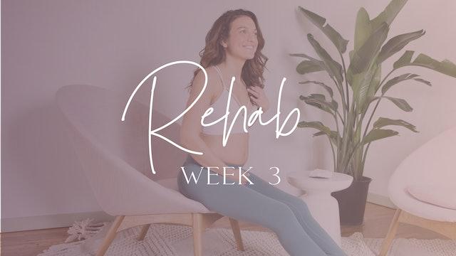REHAB Week 3 (Education + Circuit)