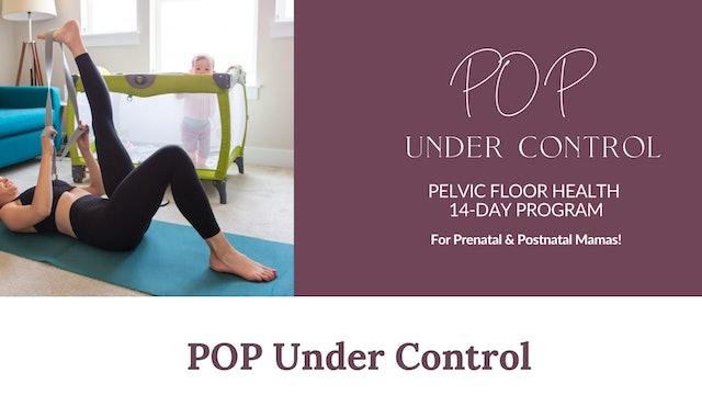 POP Under Control Overview
