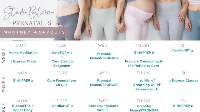Prenatal Workout Calendar 5