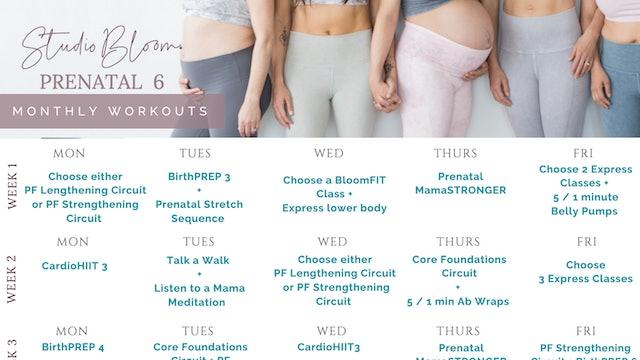 Prenatal Workout Calendar 6