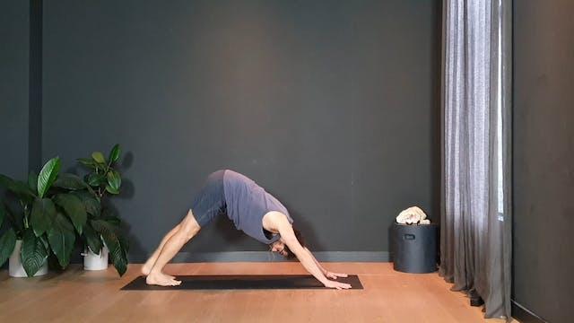 Vinyasa flow w/ Joe to heat up the body   20 minutes