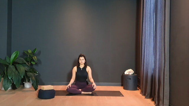 Bondi Flow w/ Fi for a balanced practice   30 minutes