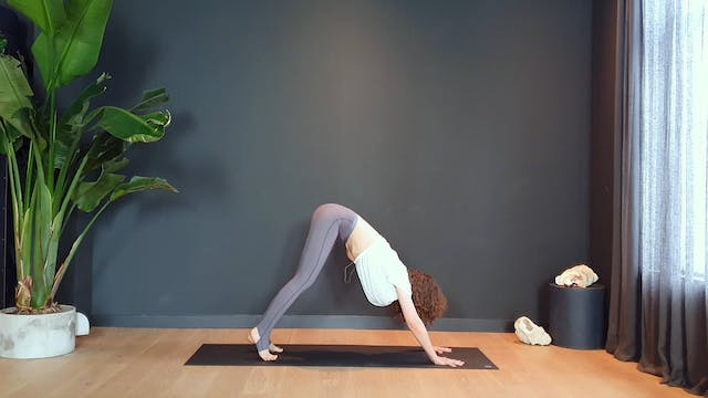 Bondi Flow w/ Roos to open, stretch, twist and strengthen   35 minutes