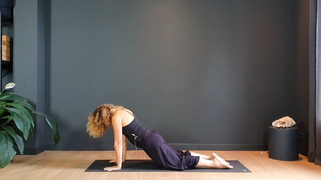 Morning Flow w/ Judith to center and create space   20 minutes