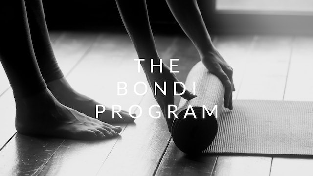 The Bondi Program