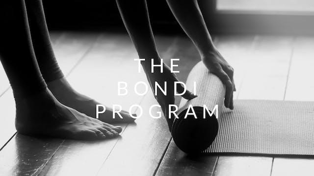 The Bondi Program