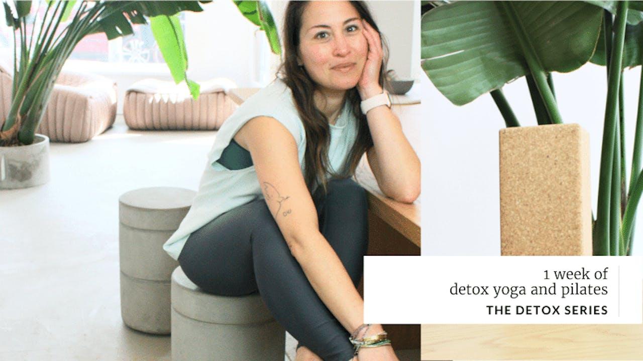The Detox Program
