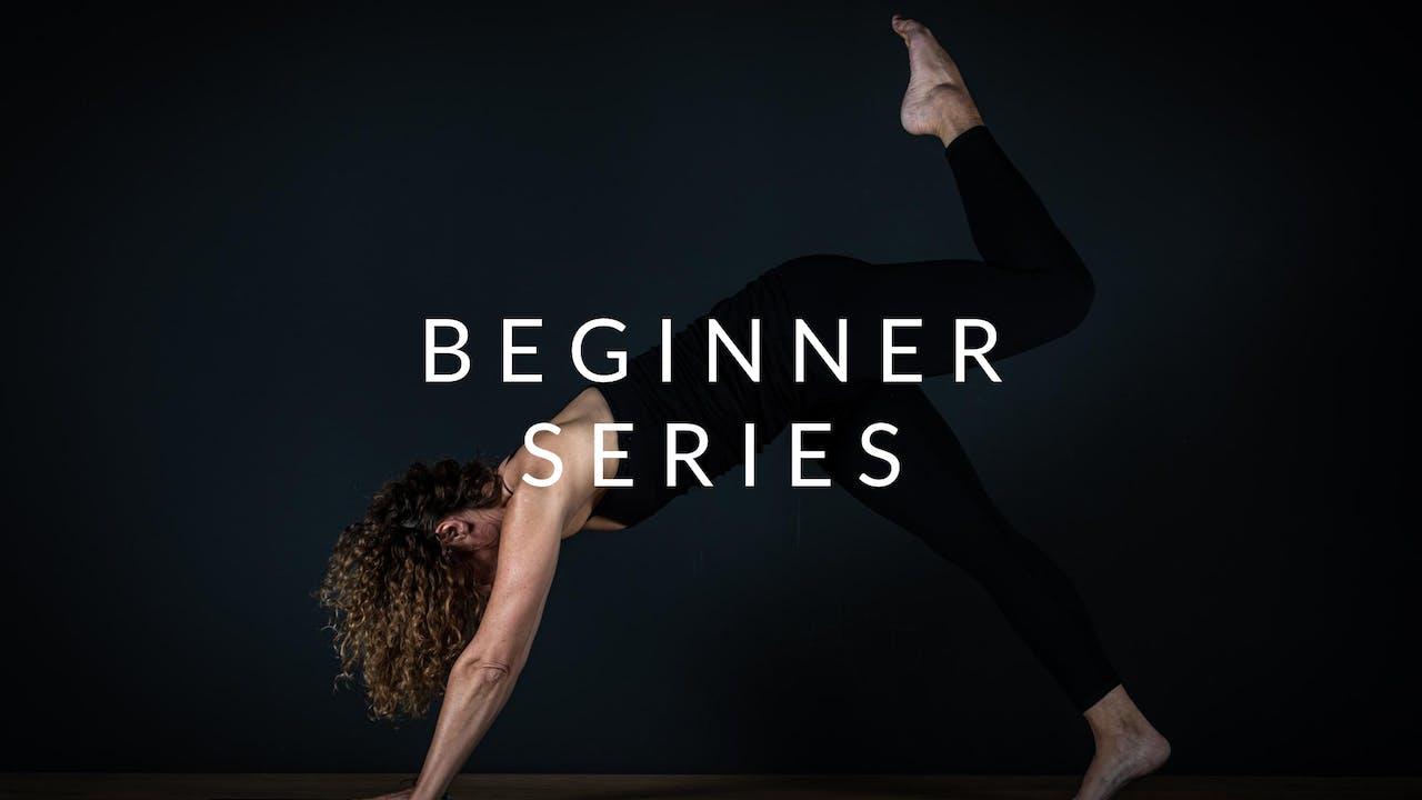 Beginner Series