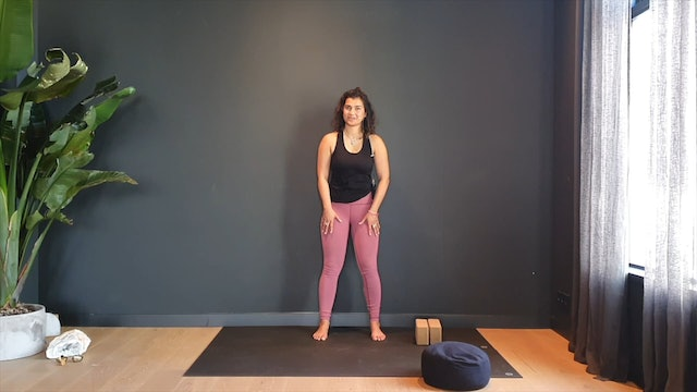 Yin w/ Fi for release along the back body   35 minutes