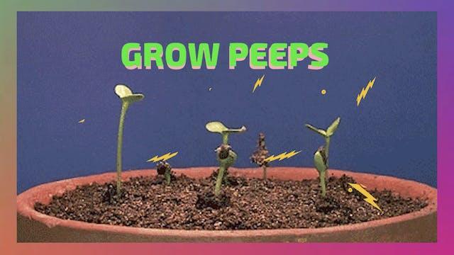 GROW PEEPS