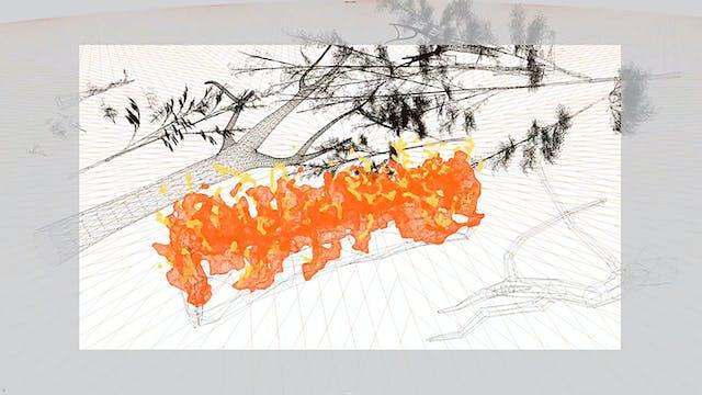Fire Line Studies