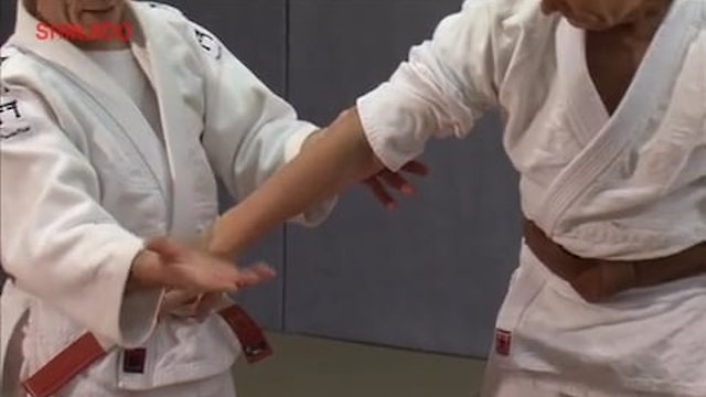 Standing Locks | Shinjido