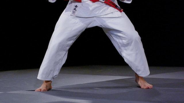 Ashi Waza   Tandoku Renshu   Yusuke Kanamaru