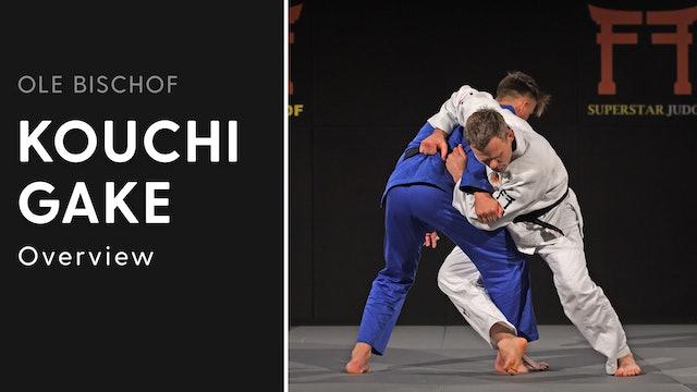 Kouchi gake - Overview   Ole Bischof
