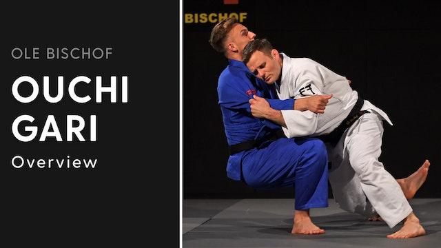 Ouchi gari - Overview | Ole Bischof