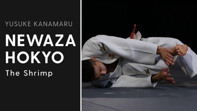 The Shrimp | Newaza Hokyo | Yusuke Kanamaru