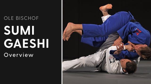 Sumi gaeshi - Overview | Ole Bischof