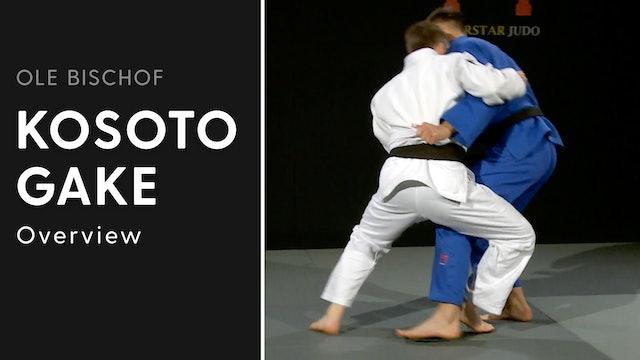 Kosoto gake - Overview | Ole Bischof