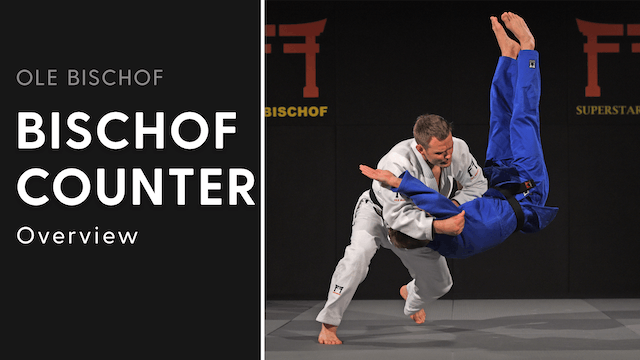 Bischof Counter - Overview | Ole Bischof