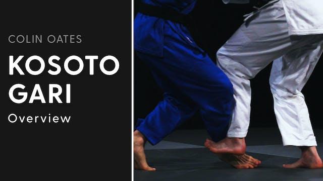 Overview | Kosoto Gari | Colin Oates