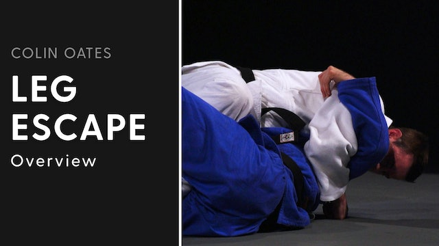 Overview | Leg Escape | Colin Oates