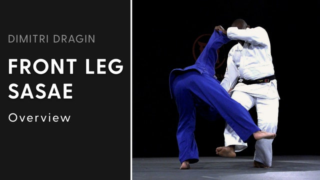 Overview | Front Leg Sasae | Dimitri Dragin