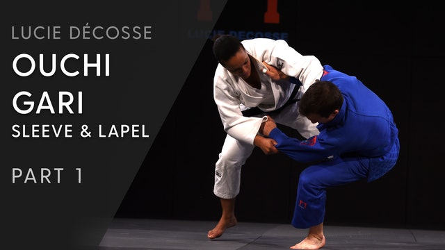 Ouchi gari | Sleeve and lapel | Overview | Lucie Décosse