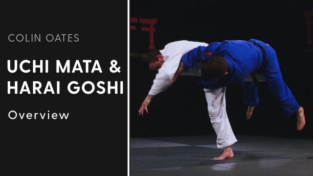 Overview | Uchi Mata & Harai Goshi | Colin Oates