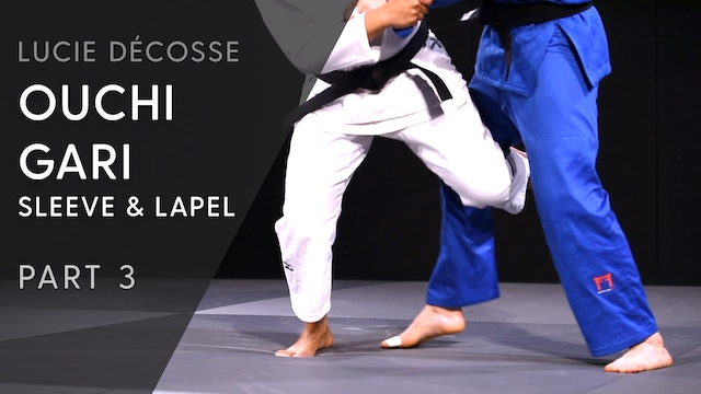 Lower Body, uchikomi & execution | Ouchi gari | Sleeve and lapel | Décosse