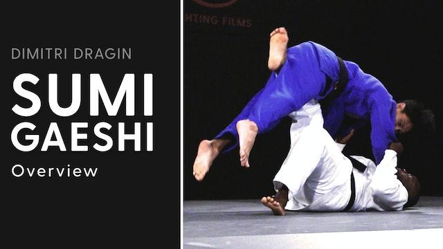 Overview | Sumi Gaeshi | Dimitri Dragin