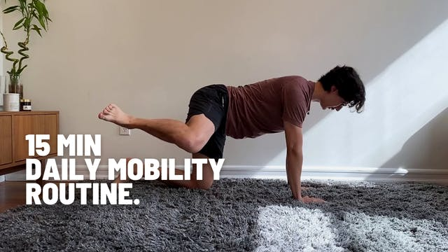15 MIN DAILY MOBILITY