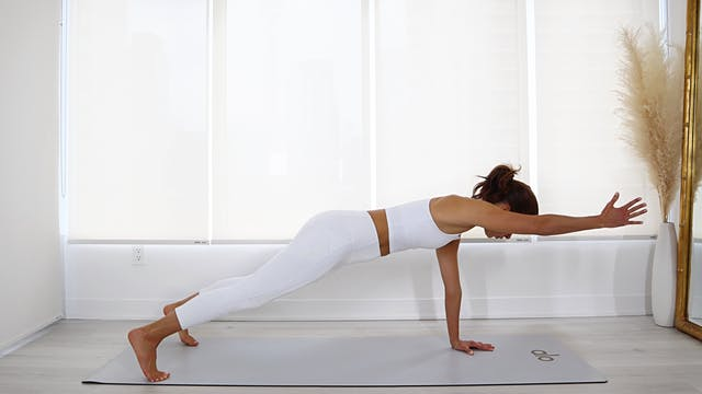 5 Min Plank Series