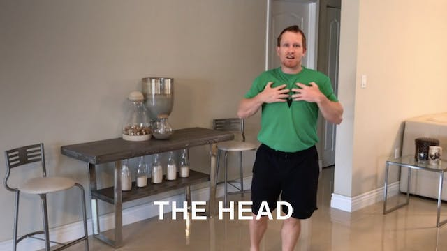 At Home 4 - The Head