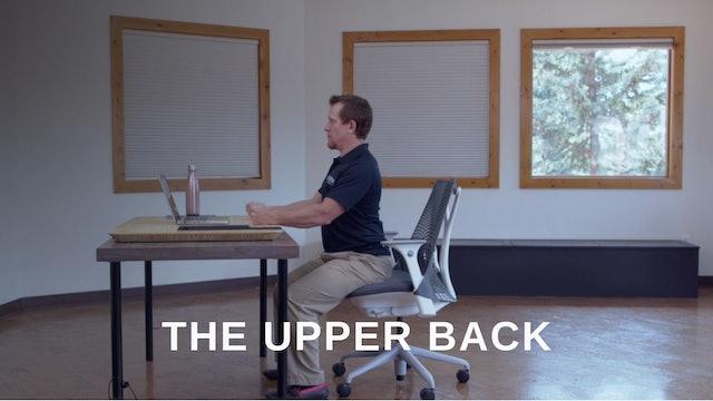 Office 9 - Upper Back