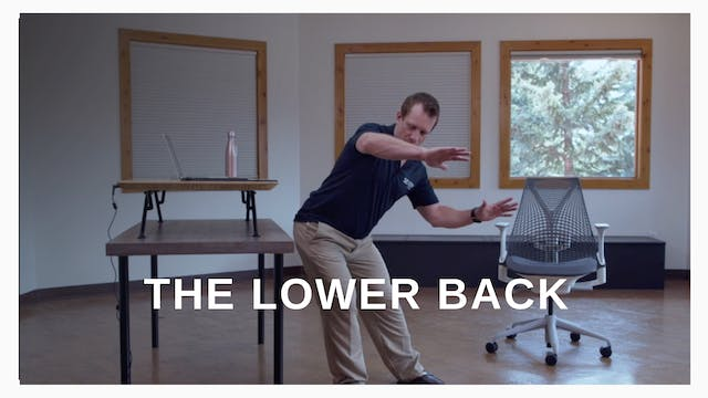 Office 5:  The Lower Back