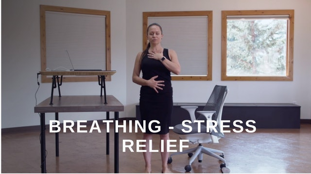 Office 12 - Stress Relief